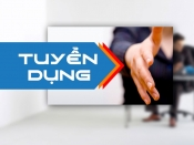 TUYỂN DỤNG BUSINESS ANALYST (GẤP)